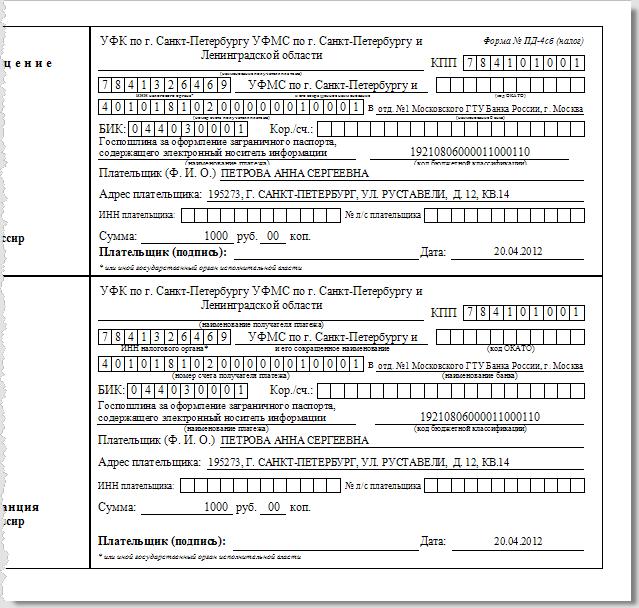 Программа Доки - Паспорт нового образца. Квитанция на госпошлину